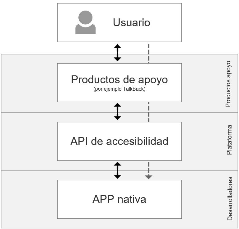 El usuario interactúa con la app através de la API de accesibilidad.